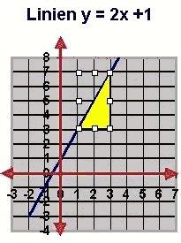 rette linjer og lineære funksjoner